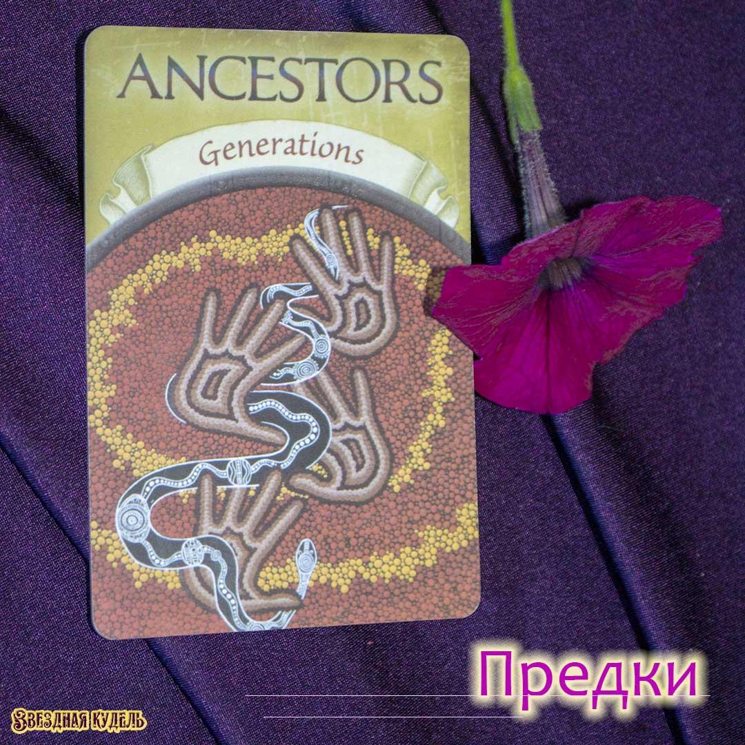 Предки (Поколения, Род)